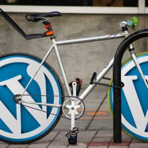 step by step guide to install a wordpress plugin